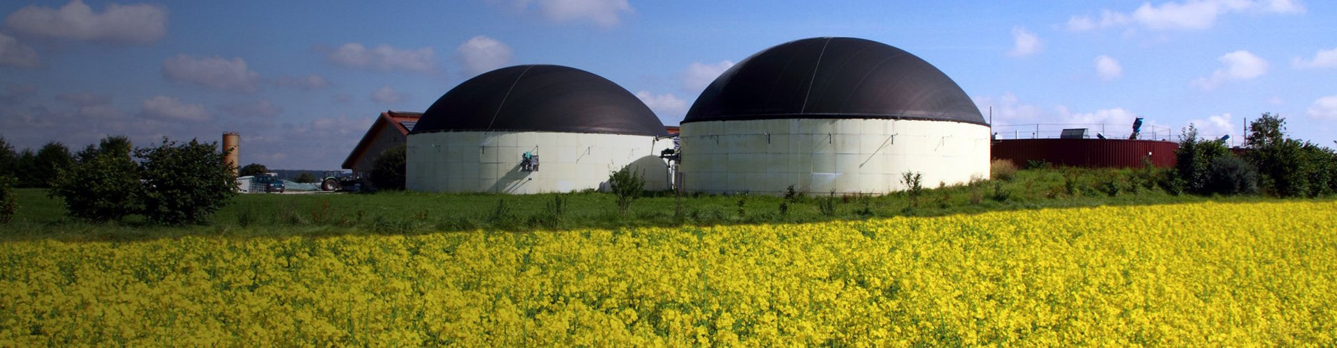Biogas-RESinvestments